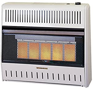 Procom Natural Gas Heater Manual