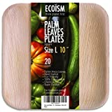 Palm Leaf Plates by Ecoism (10
