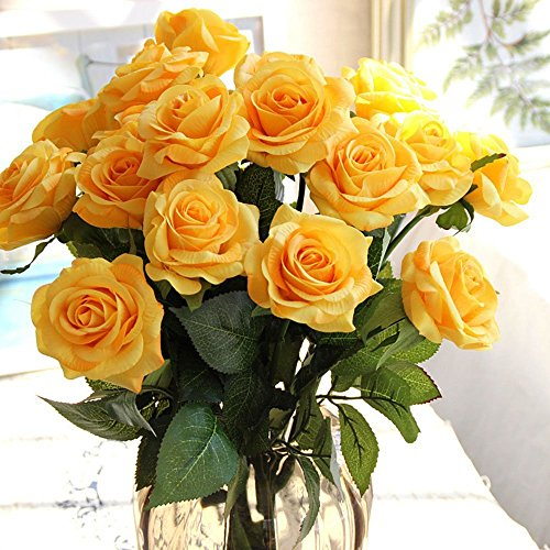 Light Yellow Garden Roses - 8