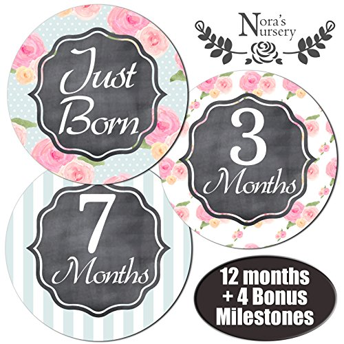 Baby Girl Monthly Stickers - Great Shower Gift or Scrapbook Photo - Online Free Offer That Shipping Stores