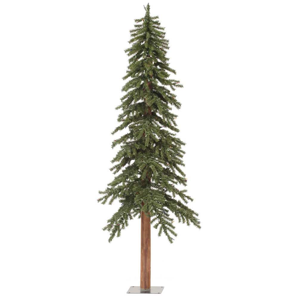 Amazon.com: Vickerman 6\' Unlit Natural Alpine Christmas Tree: Home ...