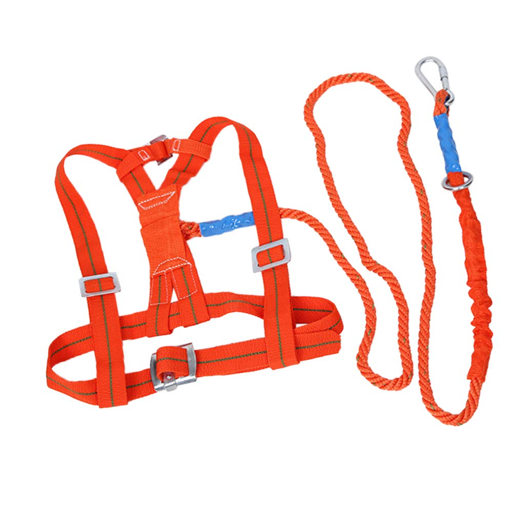 D DOLITY Half Body Safety Harness Tool Fall Protection Waist Belt with 3 meter Lanyard, Universal Personal Protective Equipment