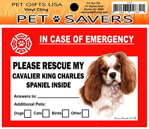 In Case of Emergency Home Window Pet Savers Rescue Cling Sticker, Cavalier King Charles (Cavalier Sticker)