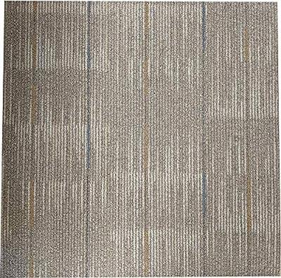 """Shaw Afterglow Carpet Tile-24""""x 24""""(12 Tiles/case, 48 sq. ft./case)"""
