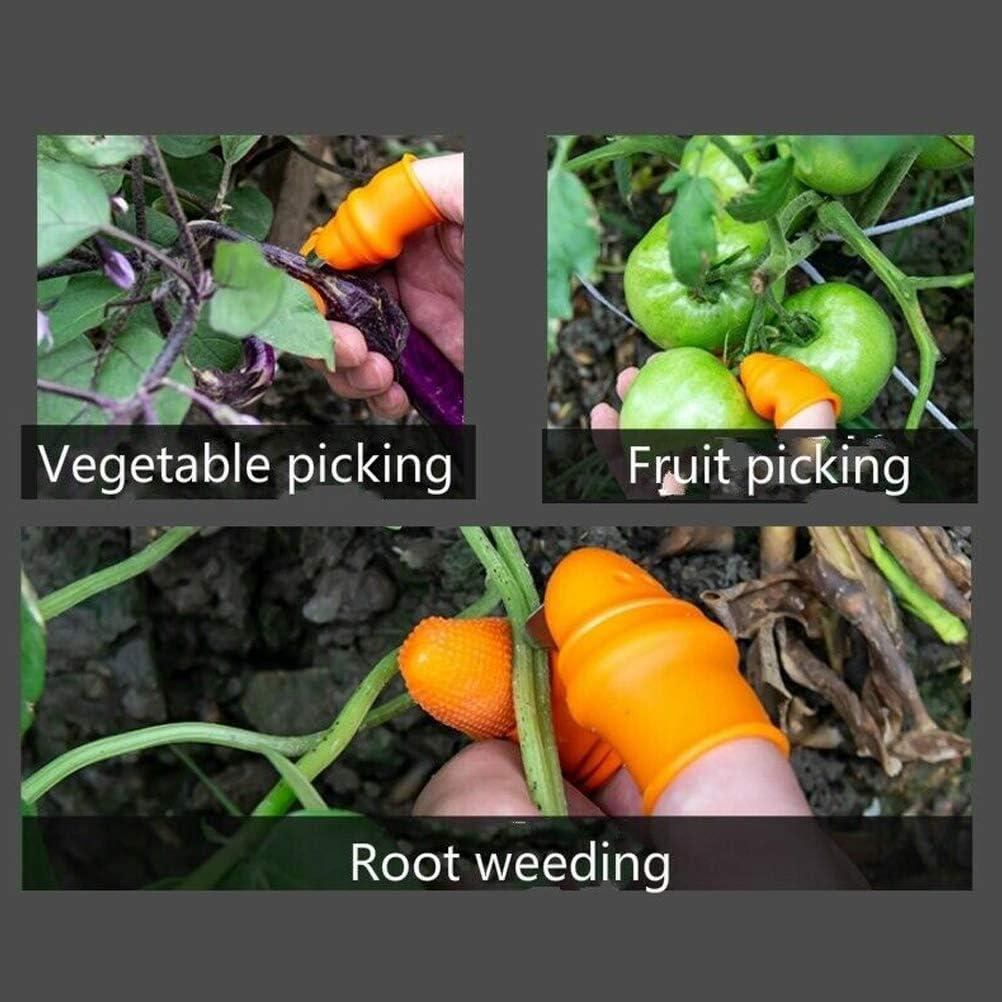 Ggdoo Recogiendo Pulgar Cortador Dedo Planta separadora Dedo Manga Set Picking Herramienta Dispositivo para la Cosecha de Plantas horticultura recolector de Frutas Selector