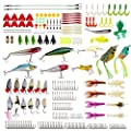 Fishing Lures Kit Set 234pcs Including Crankbaits,Plastic Soft Lures,Frog Lures for Bass,Salmon,Trout,Catfish,Panfish with Free Tackle Box by DEENOR