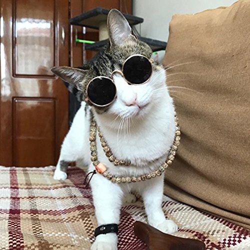 para Kitty de Mascota Moda Sol Photo de Tipo Toy gafafs los de Perro Puppy Novedad Gafas Ojos Props Moda Gafas Gafas Cat de Gafas Cool de Negro 2018 LanLan Protección AUa4xt