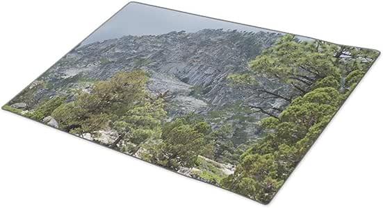 Cronoly Door Mats Outdoor Rocks Wilderness Large Door Mat
