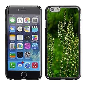 "Print Motif Coque de protection Case Cover // M00290537 Meadows Sauerampfer Inflorescencia // Apple iPhone 6 6S 6G 4.7"""