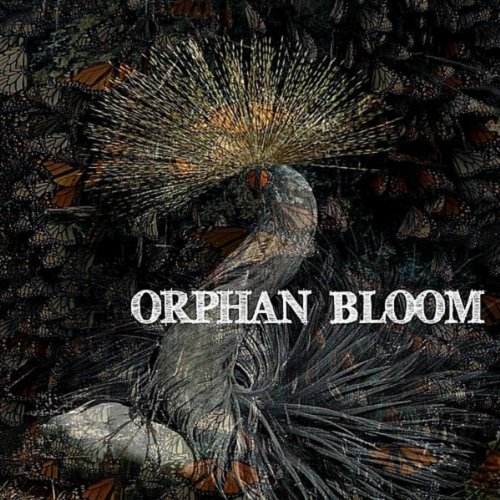 Orphan Bloom