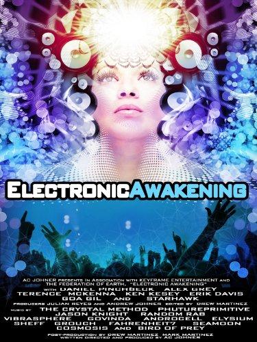 Picture of an Electronic Awakening