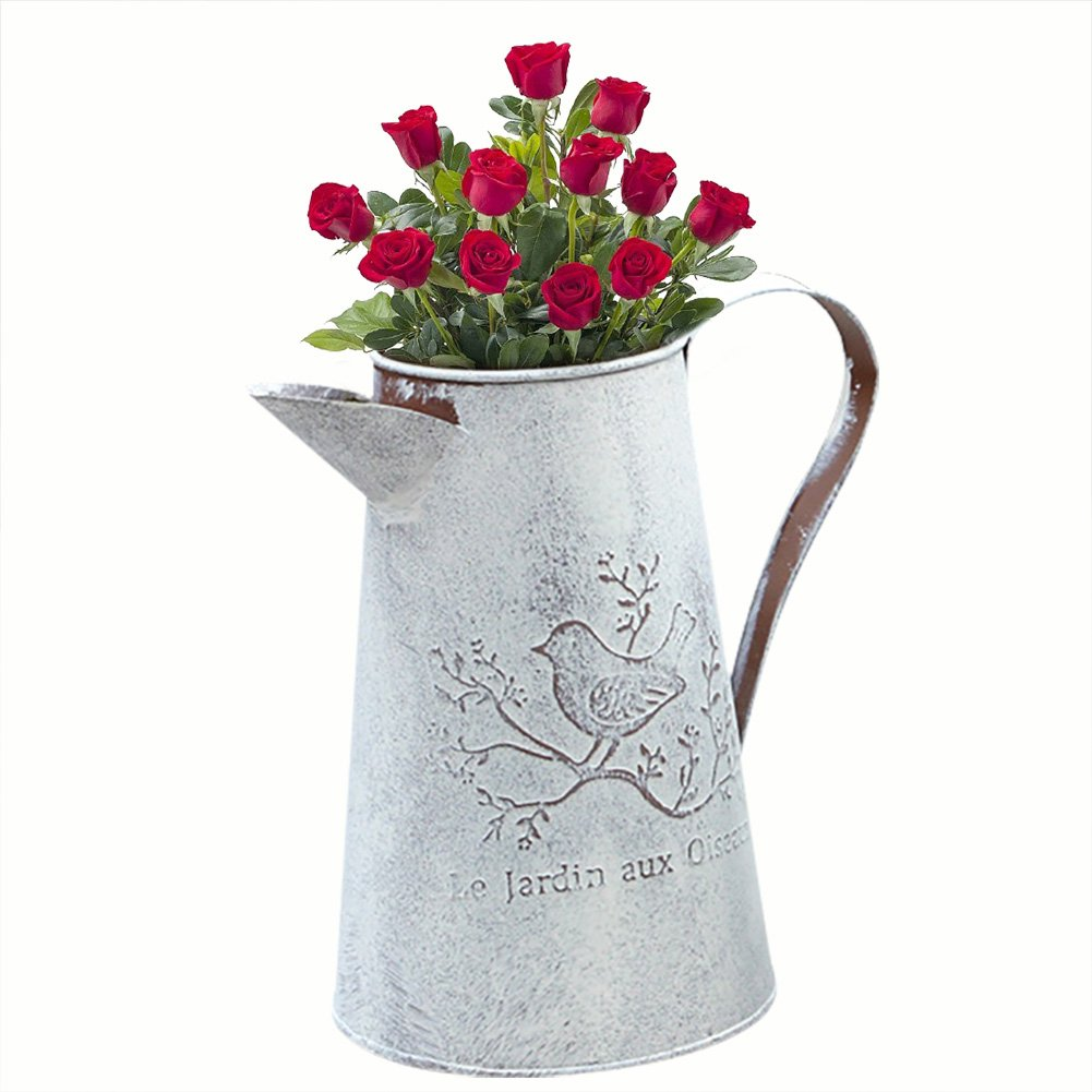 Ya-Tube Shabby Chic Elegant French Style Country Primitive Pitcher Flower Vase Watering for Home Decoration (Shorter)