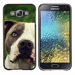 Pitbull friendly Negro hocico del perro blanco- Metal de aluminio y de plástico duro Caja del teléfono - Negro - Samsung Galaxy E5 / SM-E500