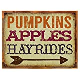 Cheap Wood-Framed Pumpkins, Apples, Hayrides Metal Sign, Novelty, Kitchen, Fall for kitchen on reclaimed, rustic wood