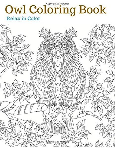 Amazon.com: OWL COLORING BOOK: Owl Adult Coloring Book, Owls Coloring Book  (9781980937807): Color, Relax In: Books