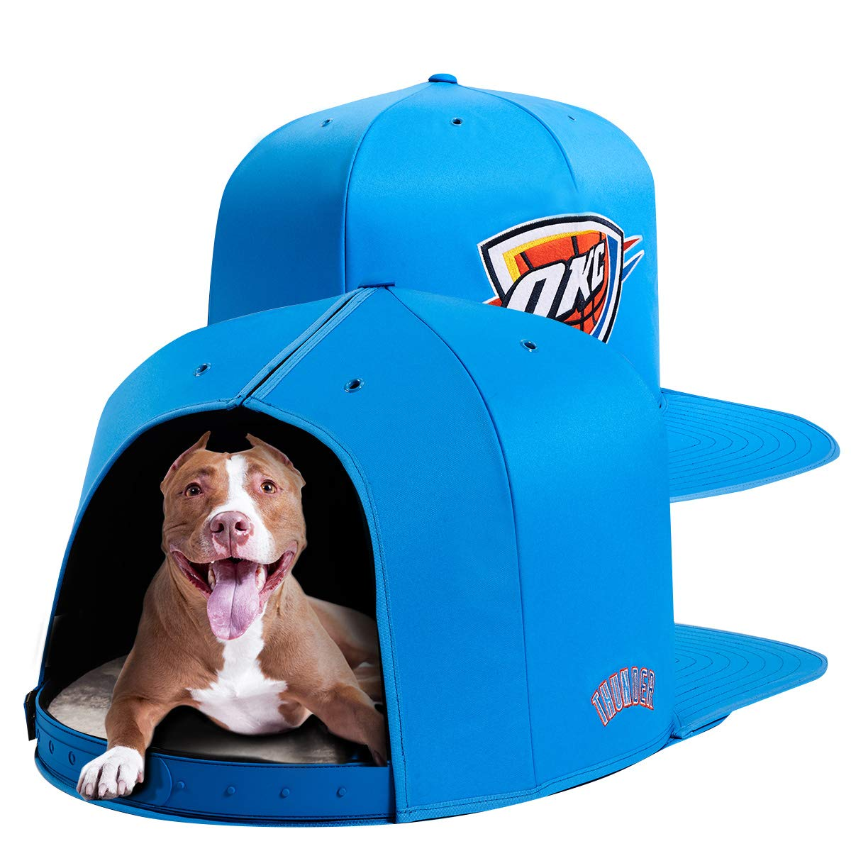 NAP CAP NBA Oklahoma City Thunder Team Indoor Pet Bed, Blue (Large)
