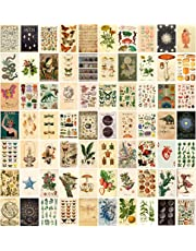 ANERZA Vintage Wall Collage Kit Aesthetic Pictures, Cottagecore Room Decor for Bedroom Aesthetic, Posters for Room Aesthetic, Cute Boho Photo Wall Decor for Teen Girls, Dorm Green Wall Art (70 pcs)