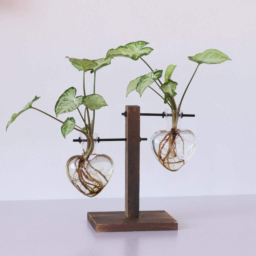 Retro Wooden Tray Hanging Clear Glass Vase Hydroponic Container-Heart Beaker by Agordo