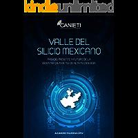 Valle del Silicio Mexicano: Pasado, presente y futuro de la industria jalisciense de alta tecnología