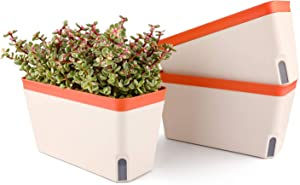 T4U Self Watering Planter Pot Rectangle 10.5 Inch Set of 3, Plastic Plant Pot with Visual Water Level Window Indoor Decorative Garden Flower Pot for Aloe Herb Orchid and Succulent Plants Orange
