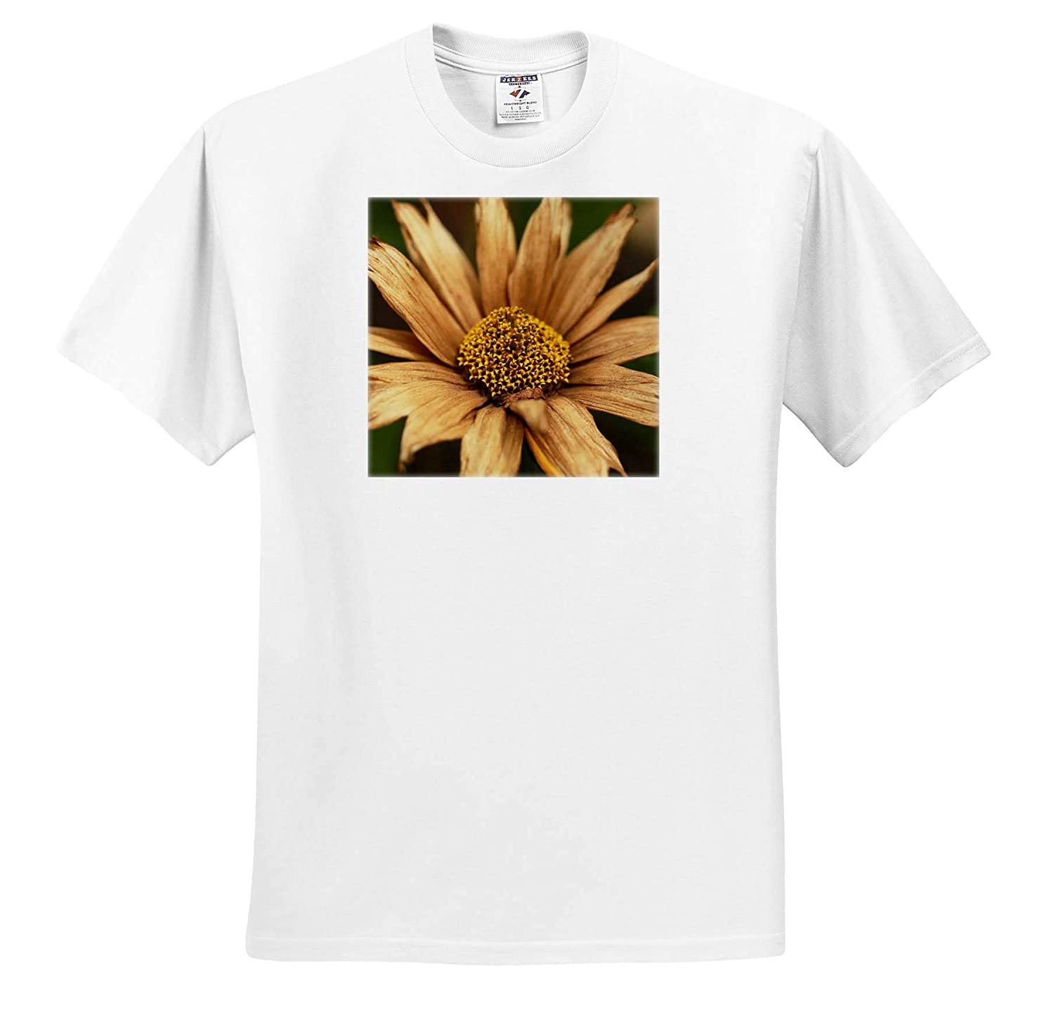 3dRose Stamp City Flowers Macro Photograph of a Dried Maximilian Sunflower - Adult T-Shirt XL ts/_320140