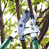 WOOSTAR Compound Action Anvil Lopper 36-inch Tree