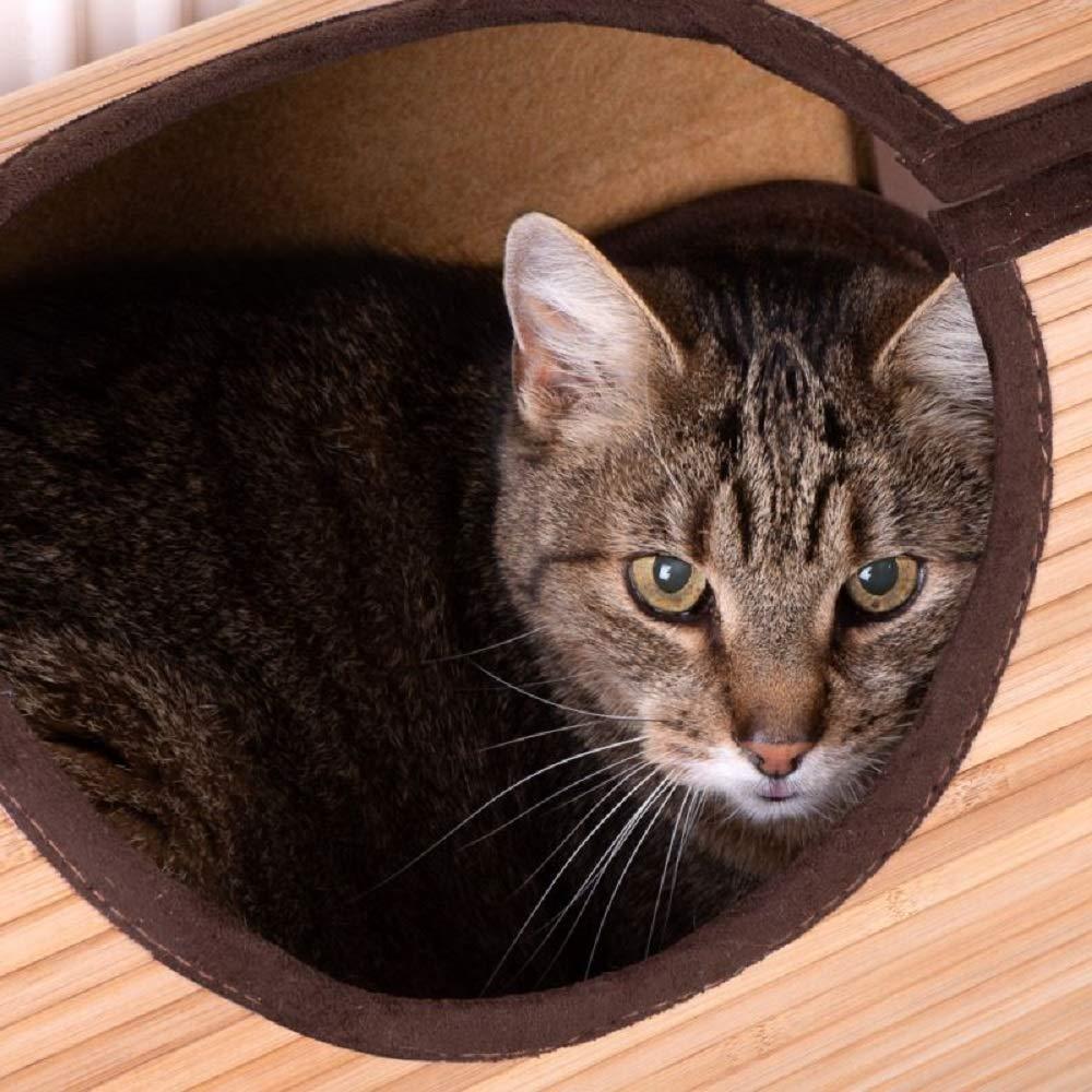 un posto comodo per nascondersi Letto in bamb/ù per gatti da appendere al termosifone