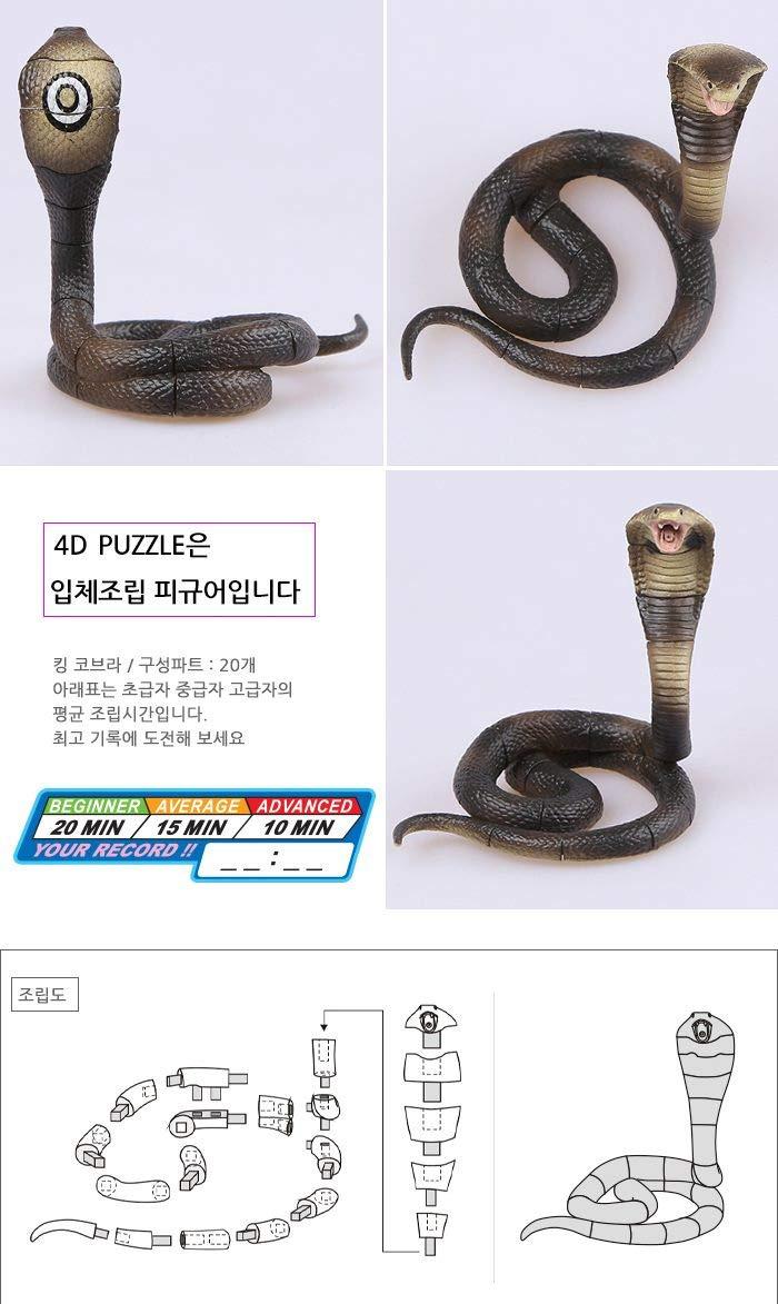 King Cobra Anatomy Tollebild