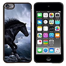 Graphic4You Horse In The Dark Animal Design Hard Case Cover for Apple iPod Touch 6