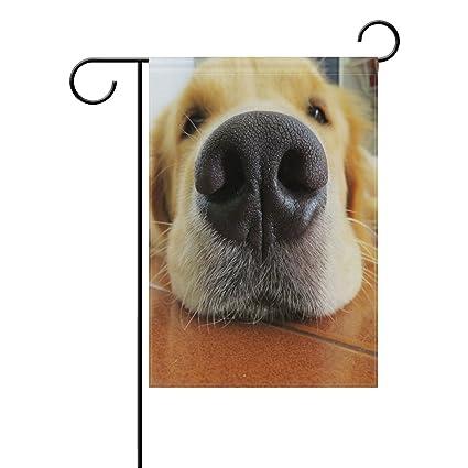 Amazon Com Blue Viper Golden Retriever Cute Nose Garden Flag