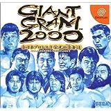 GIANT GRAM2000全日本プロレス3