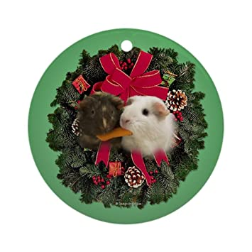 Image Unavailable. Image not available for. Color: CafePress Guinea Pigs  Ornament ... - Amazon.com: CafePress Guinea Pigs Ornament (Round) Round Holiday