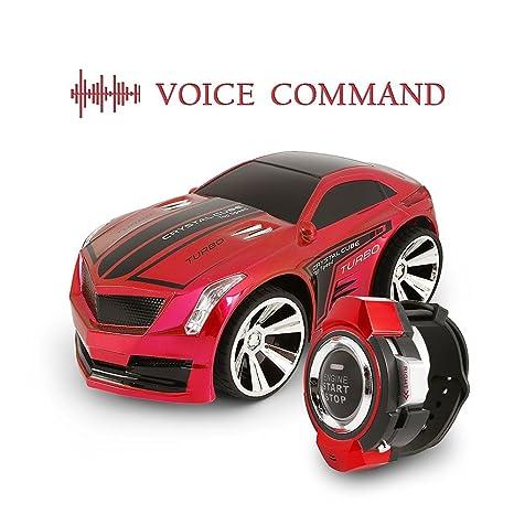 cdf56f5e98a Amazon.com  Voice Control Car