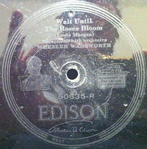 WHEELER WADSWORTH / WAIKIKI HAWAIIAN ORCHESTRA WAIT UNTIL THE ROSES BLOOM / ALOHA LAND vinyl - Malls Waikiki