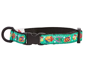 RC Pet Products 1/2-Inch Kitty Breakaway Cat Collar, 8 by 10