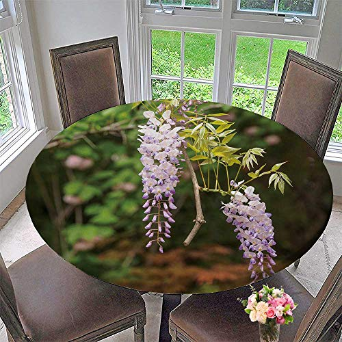 PINAFORE HOME Picnic Circle Table Cloths SPR Flowers Series Wisteria Trellis in Garden for Family Dinners or Gatherings 63
