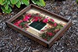 LaModaHome Serving Tray 100% Wooden Rectangle (15.7'' x 19.7'') Height of Frame (2.4'') Window Vase Flower Rose Herb Nature Daisy Poppy Tulip Serving Tray with Handles, Plate for Serving Food and Drink