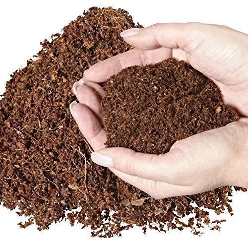 20 litros natural terrarios ubstrat múltiple en bolsa de seca y streufähig - 100% puro Coco Tierra como sustrato einstreu de coco coco de suelos: Amazon.es: ...