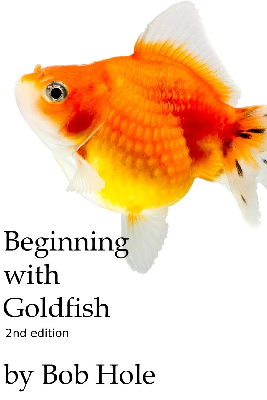 Beginning with Goldfish