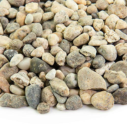 Large Gravel - Southwest Boulder & Stone Landscape Rock and Pebble | 20 Pounds | Natural, Decorative Stones and Gravel for Landscaping, Gardening, Potted Plants, and More (Del Rio, 3/8 Inch)