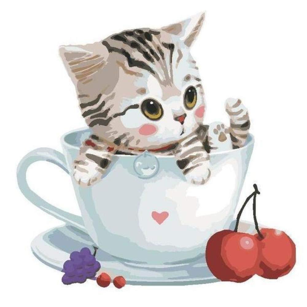 DIY /Ölgem/älde Malen nach Zahlen Katze In Einer Kirschschale 40 x 50cm Leinwand Gem/älde f/ür Erwachsene und Kinder Enth/ält Acrylfarben und 3 Pinsel Kein Rahmen