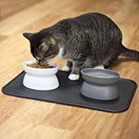 Kitty City Raised Cat Food Bowls and Mat Kit, Each Holds 6.5 Ounces- Pet Bowl for Dogs Cats and Pets