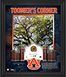 Auburn Tigers Oaks at Toomer's Corner Framed 20'' x 24'' Print with Piece of Authentic Oak - Fanatics Authentic Certified