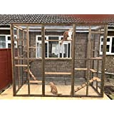 4wire Catio/Cat Lean to 8ft x 6ft x 7.5ft tall with ladders and shelves secure run