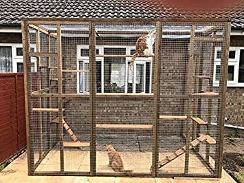 Elegant 4wire Catio/Cat Lean To 8ft X 6ft X 7.5ft Tall With Ladders And