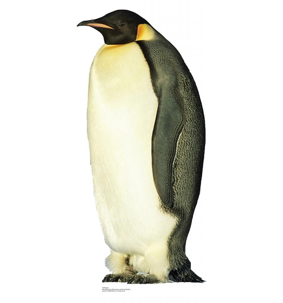 Penguin - Advanced Graphics Life Size Cardboard Standup