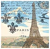 Michel Design Works 20-Count 3-Ply Paper Cocktail Napkins, Paris