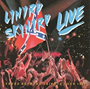 Southern By The Grace Of God- Lynyrd Skynyrd Tribute Tour - 1987