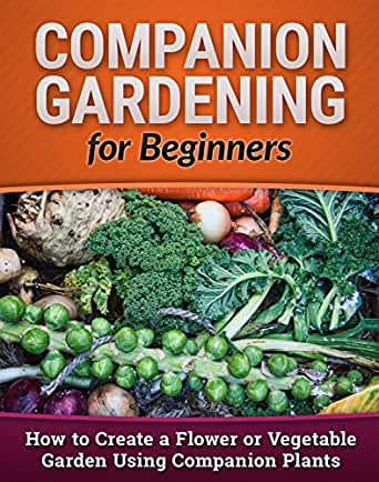 Companion Gardening For Beginners How To Create A Flower Or Vegetable Garden Using Companion