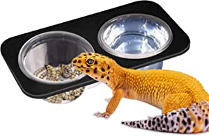 2 Bowls Gecko Feeding Ledge, Reptile Suction Cup Food Dish for Snakes Lizards Spiders Chameleons Corn Snakes Iguanas Reptiles